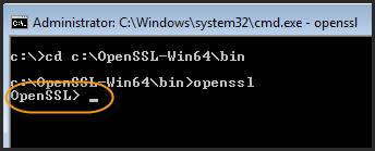 Run OpenSSL